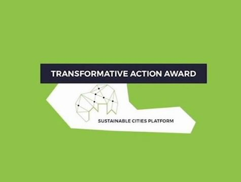 Transformative action award